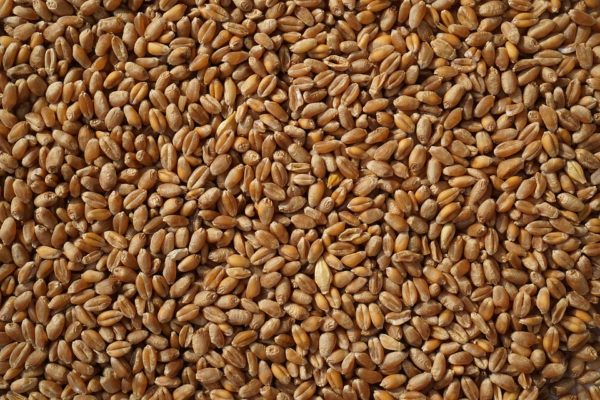 double-the-grains